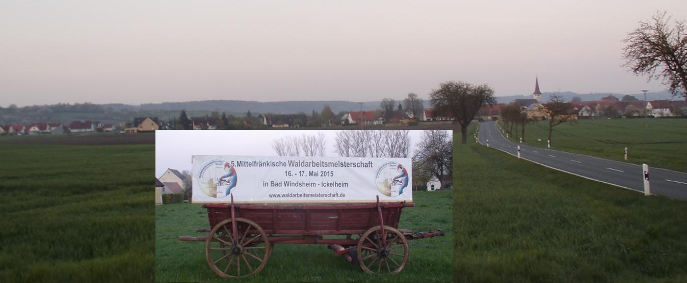 20150516_17_Waldarbeitsmeisterschaft